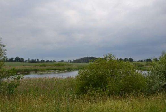 Wasserbecken in dem Grabsteine versenkt wurden